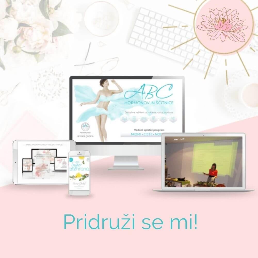 12 tedenski spletni detox program - Simone Godina